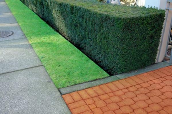 des conseils en d coration maison et jardin cr er une belle haie pour son jardin. Black Bedroom Furniture Sets. Home Design Ideas